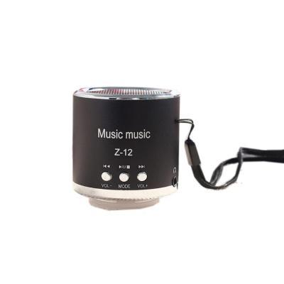 Portable Speaker Insert Card Support MicroSD Card, USB Flash Disk, FM Radio - Z