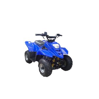 X5 Midsize Racing ATV Quadbike 110cc